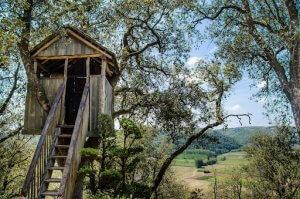 casa na árvore com segurança
